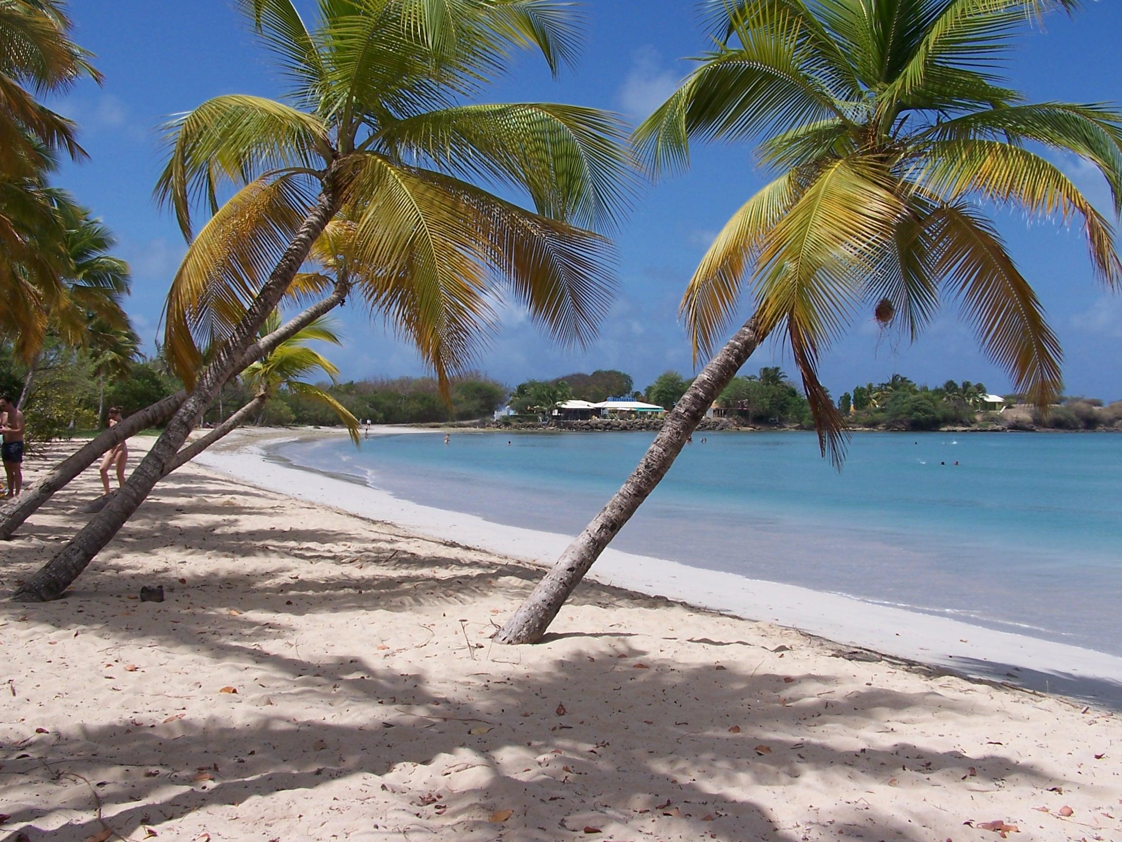 Ma Nouvelle Vie En Martinique En Mode Gonzesse Le Blog