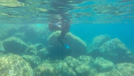 plongée Amandine EMG