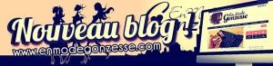Blog bannière