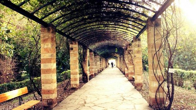 5-jardin2